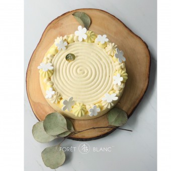 Baked French Lemon Cheesecake 7""