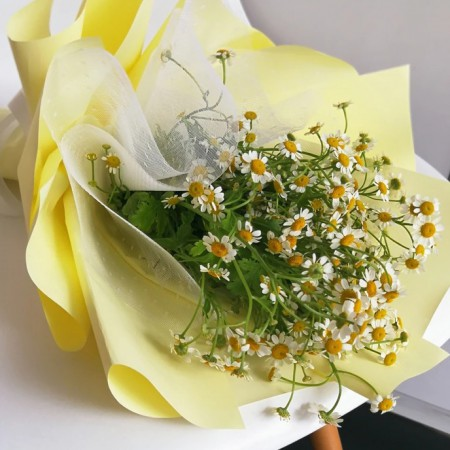 Sweet Chamomile Bouquet